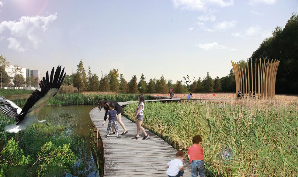 Wetland_Perspective.jpg