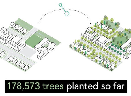 five million trees for a greener sydney by 2030