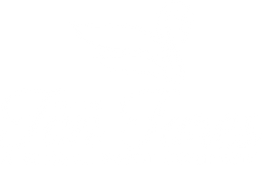 DFF Logo Swan Center White.png