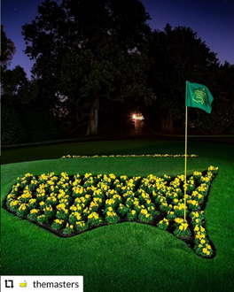 What a week! 💚🏌🏽♂️⛳️  #DFF #DallasFanFares #Masters2021