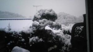 奈良は、大雪!
