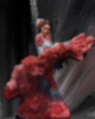600-flamenco-print-6.jpg