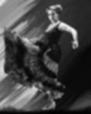 600-flamenco-print-10.jpg
