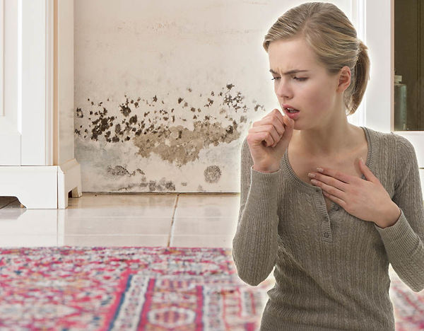 Mould Spores Health problems