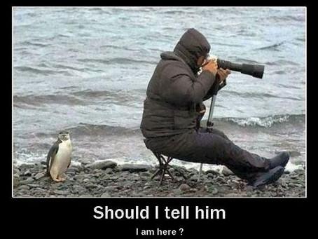 JOKES ABOUT PHOTOGRAPHERS