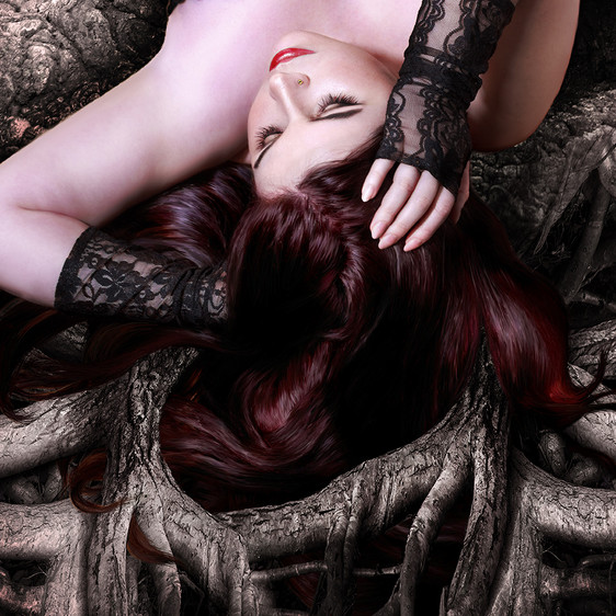 Tangled. Tree roots.