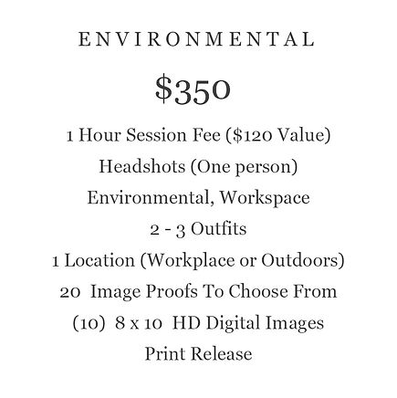 ENVIRONMENTAL PACKAGE BUSINESS  PRICING