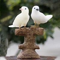 Onyx Dove