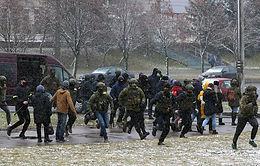 МВД Белоруссии подтвердило применение спецсредств к участникам незаконных акций 29 ноября
