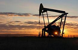 Несколько стран ОПЕК+ выступили за постепенное увеличение добычи нефти с января