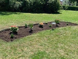 garden plot done.jpg