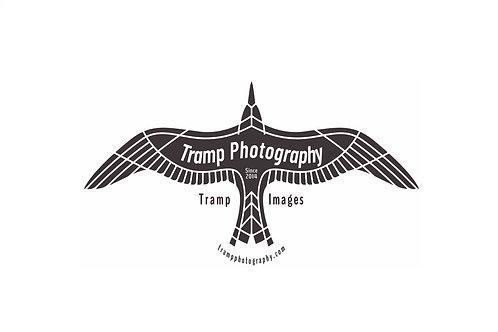 Tramp Images Logo T-shirt - Flying Bird