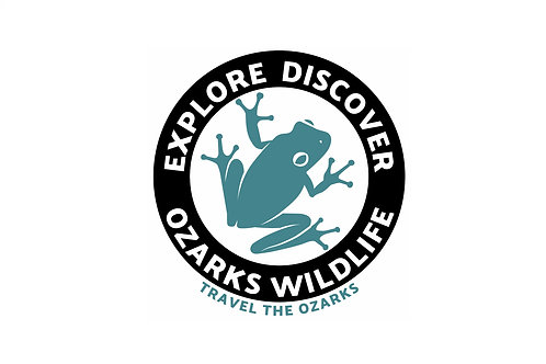 Travel The Ozarks T-Shirt - Tree Frog