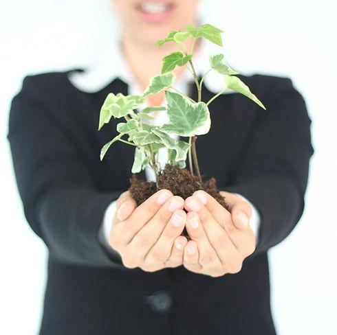 Plant Presentation _edited.jpg