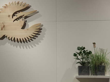 Revitalisierung am Münchener Gärtnerplatz - Naturschutz Shop im neuen Gewand