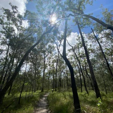 Trail Running - Tips & Tricks