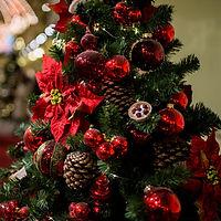 Christmas 06 Crop Resize.jpg