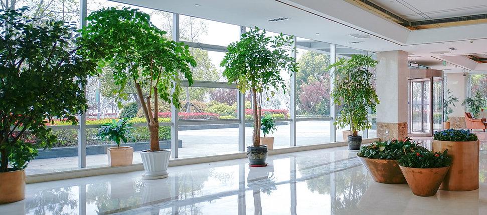 HP Interior Scene 03 Crop 1200px.jpg
