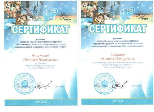 Сертификаты НПК Звягина ЭМ Фирстова НН S