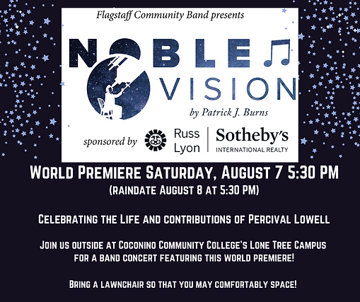 Copy of Noble Vision Flyer.png