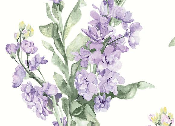 Lilac 20