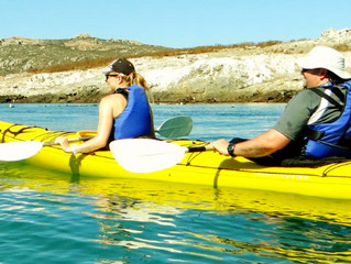 Sea kayak Houtbay with Venture Forth
