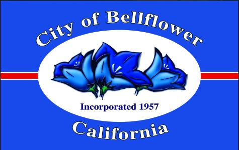 bellflower bail bonds