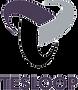 tesloop_logo.png
