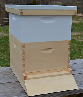 10-Frame Deep (Deluxe) Hive Kit