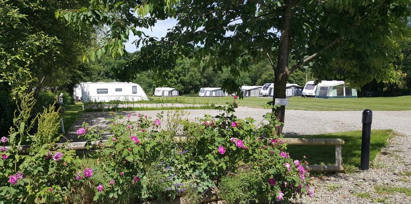 Dolbryn Campsite West Wales 28.jpg