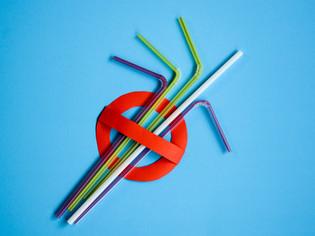 Reducing Plastic Waste at Dolbryn