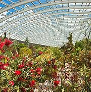 National Botanic Gardens.jpg