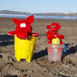 Dolly & Bryn at Poppit Sands