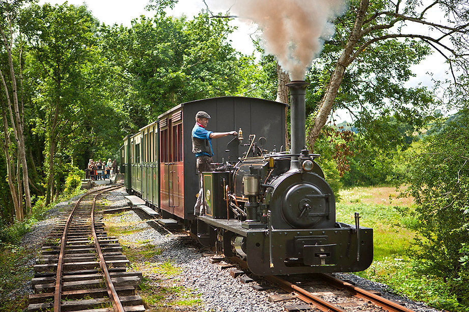 Teifi Valley Railway.jpg