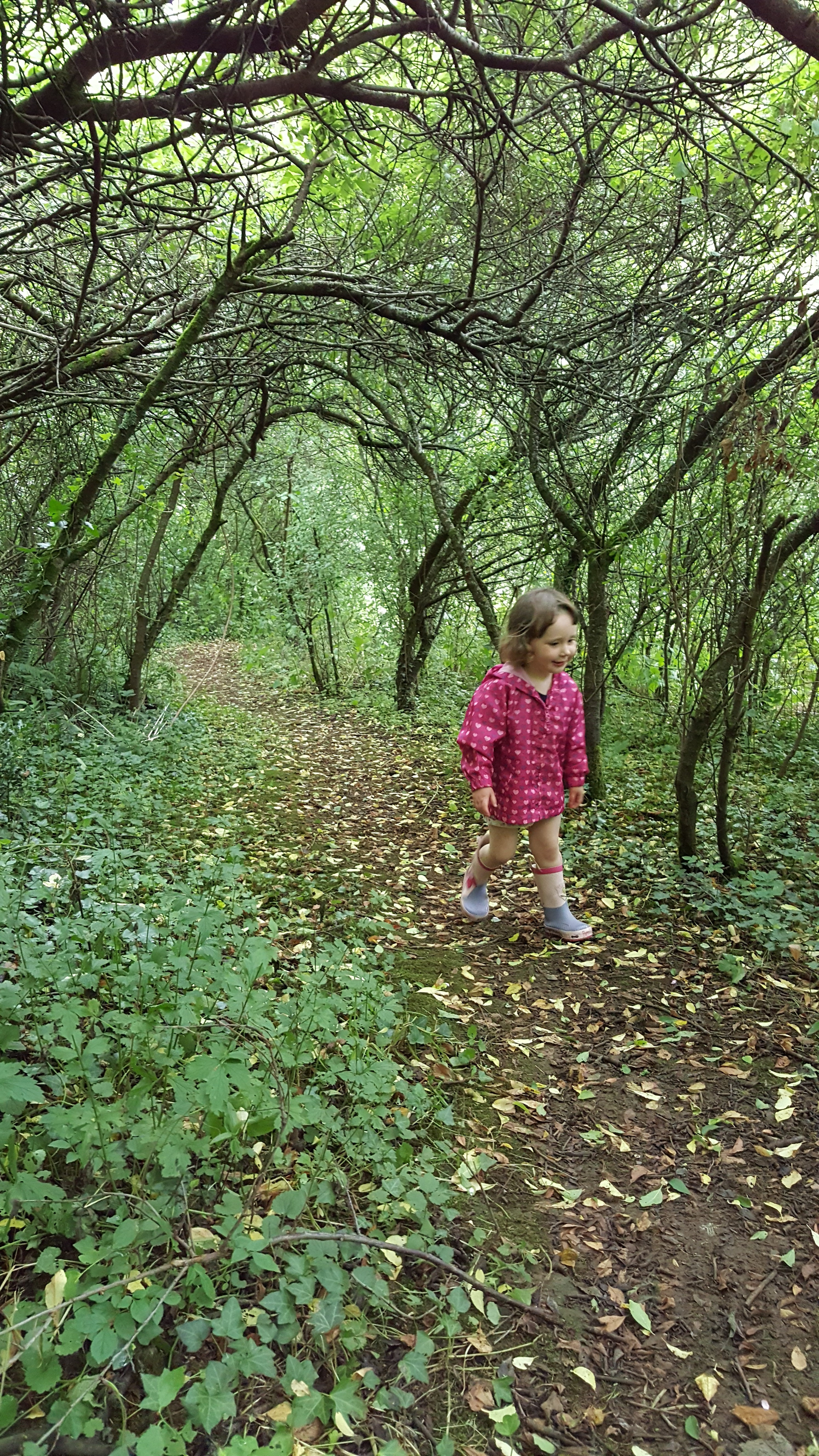 Little explorers love Dolbryn