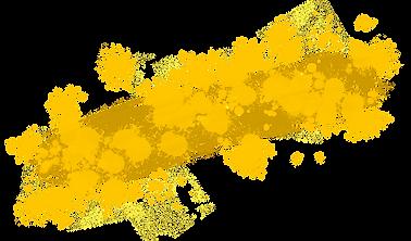 Logo_FINAL_Hintergrund gelb_75%.png