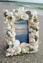 Desechos de Mar