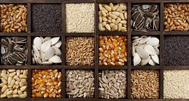Semillas y Especias