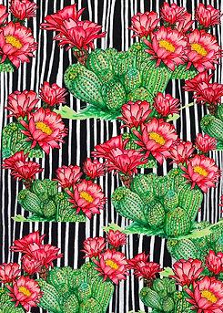 cactus estampas copy.jpg
