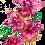 Thumbnail: Orquídea Roxa