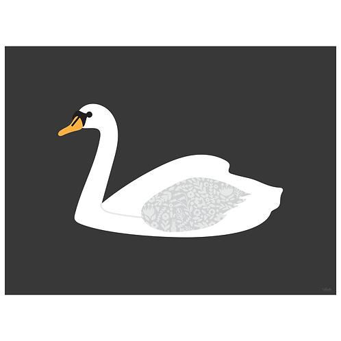 swan art print - SKU 1628