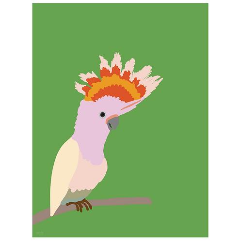 cockatiel art print - green - digital download