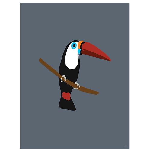 toucan art print - SKU 1634