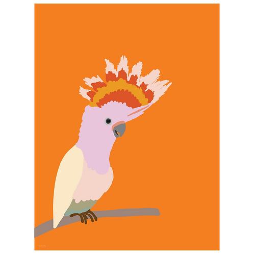 cockatiel art print - orange - digital download