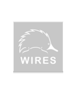 wires bw.png