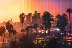Timeslice Palm LA in 24 photos