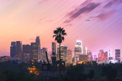 Timeslice Palm LA in 38 photos