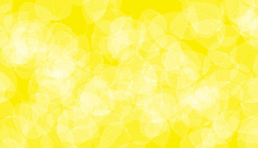 best-yellow-background-photograph.jpg
