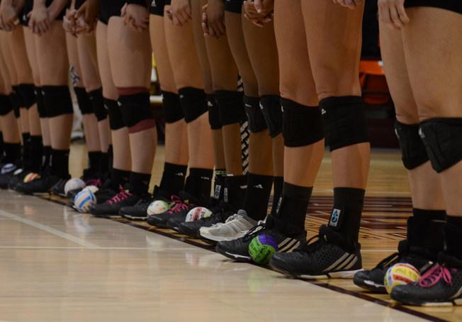 MSU Volleyball 2015