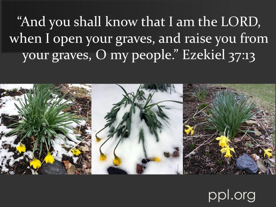 Ezekiel 37:13
